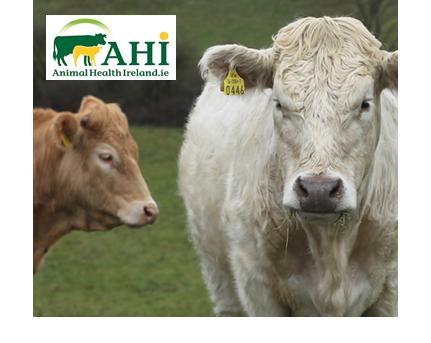 Animal Health Ireland