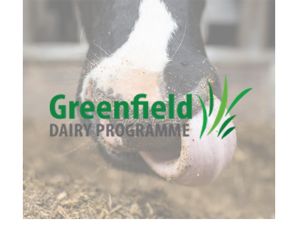 Green Field Dairy
